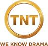 TNT gold logo (small)