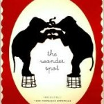"Book Review: ""The Wonder Spot"" by Melissa Bank"
