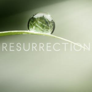 "Three's a Crowd. Recap: Resurrection – ""Us Against the World"""