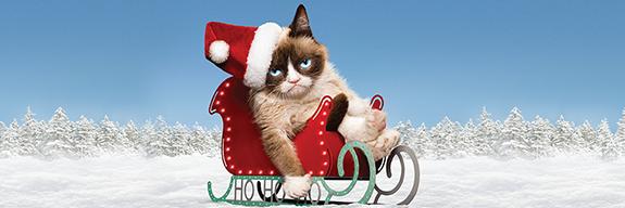 Grumpy Cat KEY ART