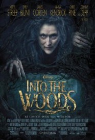 Into the Woods Main Poster