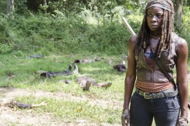 Who does something like this? Michonne breaks after seeing the dead in pieces.