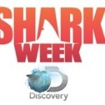 TV News: Eli Roth Returns As Host of Late Night Talk Show <i>SHARK AFTER DARK</i> Starting June 26-30
