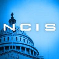 Casting News: Jennifer Esposito Joins Cast of NCIS