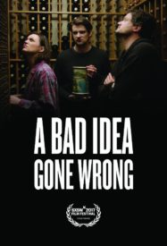 Movie Review: A Bad Idea Gone Wrong. Wrong Place, Wrong Time.